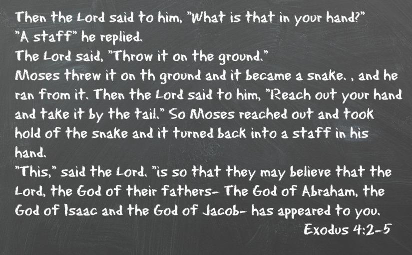 Exodus 4:2-5
