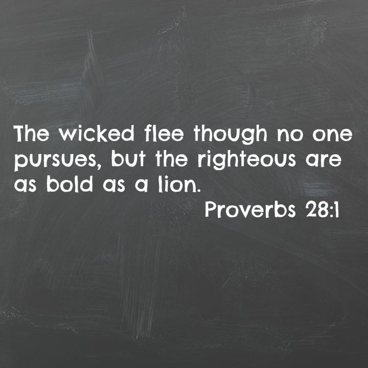 proverbs 281
