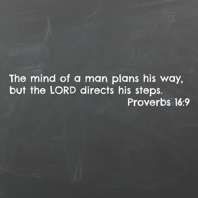 proverbs 169