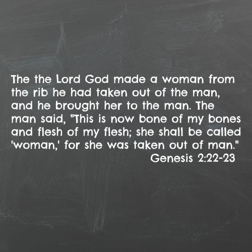 Genesis 222-23