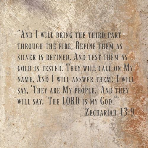 Zech 13-9