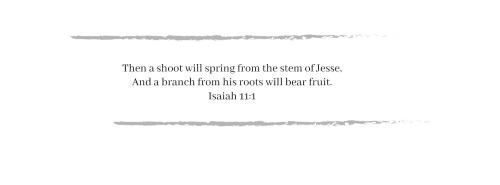 Isaiah 11-1