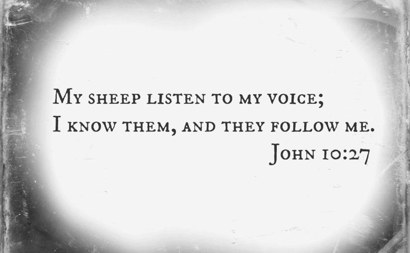 His Sheep Hear HisVoice